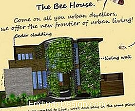 bee house, menzione