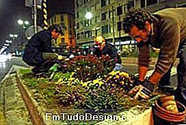 g.gardening in action (ecologia.it)