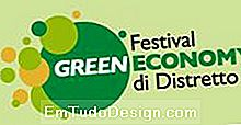 Green Economy Festival of District