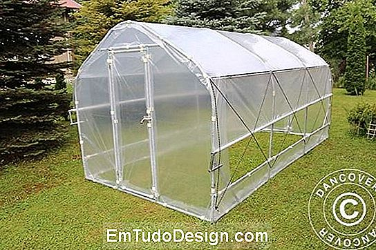 Frøplanter Polytunnel Semi Pro Plus di Dancover