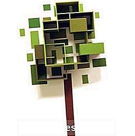 recipiente tree_sens _DIY