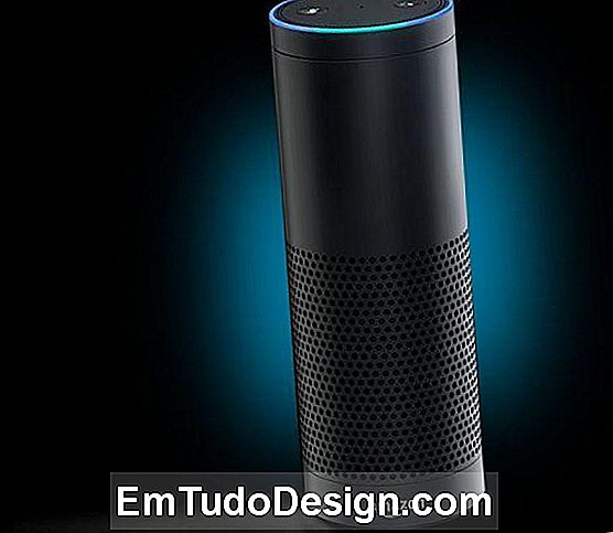 Amazon Speaker Echo
